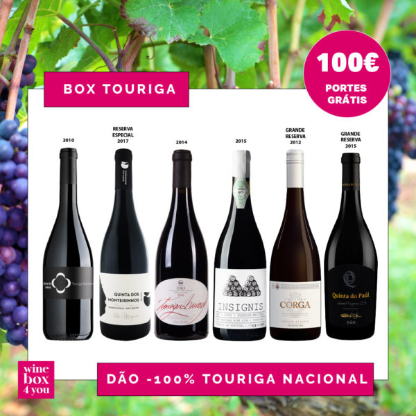BOX TOURIGA